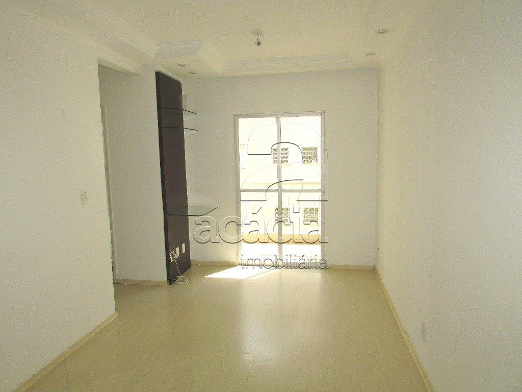 Apartamento, Jardim Elite