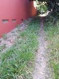 Casa - São Caetano Do Sul - Nova Gerty