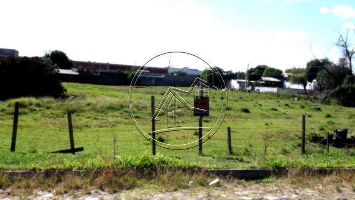 �rea para venda  no bairro Vicentina em S�o Leopoldo