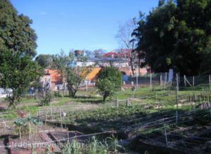 Terreno venda em S�o Leopoldo no bairro Scharlau