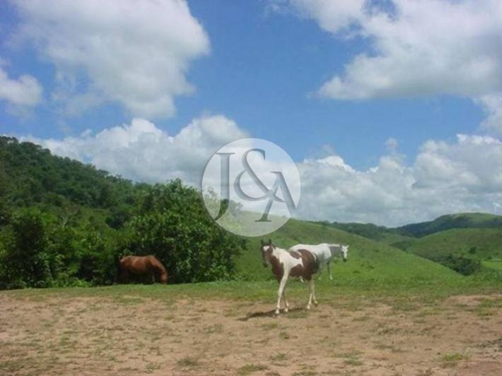 Terreno Residencial à venda em Secretário, Petrópolis - Foto 8