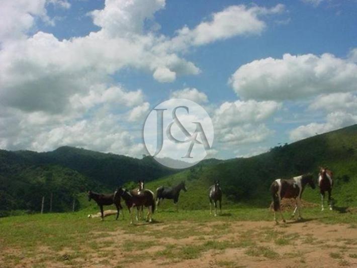 Terreno Residencial à venda em Secretário, Petrópolis - Foto 14