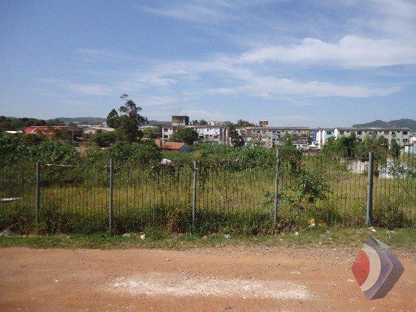 Terreno Comercial Cavalhada Porto Alegre
