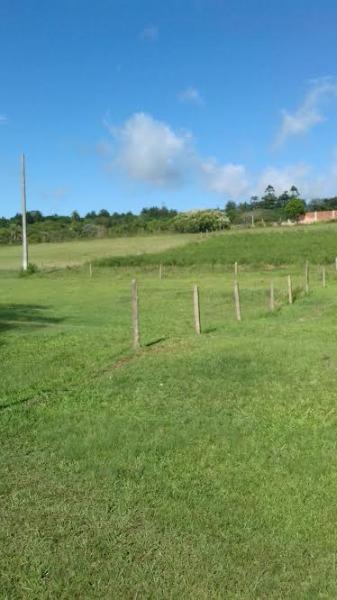 Terreno - Terreno, Belém Velho, Porto Alegre (100050) - Foto 2