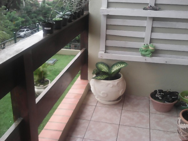 San Izidoro - Apto 3 Dorm, Cristal, Porto Alegre (101323) - Foto 2