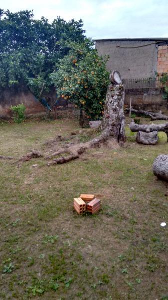 Casa 3 Dorm, Estância Velha, Canoas (102251) - Foto 17