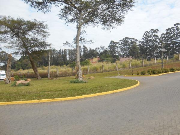 Buena Vista Parque - Casa 4 Dorm, Jardim Krahe, Viamão (103027) - Foto 12