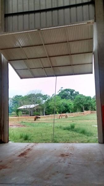 Pavilhão - Galpão, Monte Belo, Gravataí (103287) - Foto 10