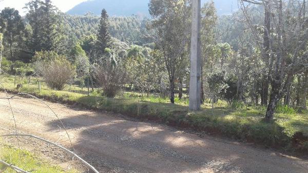 Sitio Pangaré - Sítio, Zona Rural, Gramado (103588)