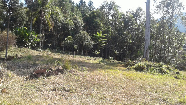 Sitio Pangaré - Sítio, Zona Rural, Gramado (103588) - Foto 3