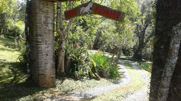 Sitio Pangaré - Sítio, Zona Rural, Gramado (103588) - Foto 2