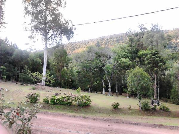 Sitio Pangaré - Sítio, Zona Rural, Gramado (103596) - Foto 10