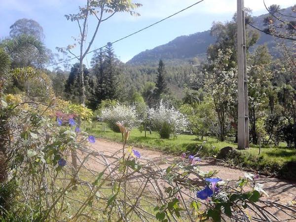 Sitio Pangaré - Sítio, Zona Rural, Gramado (103596) - Foto 6
