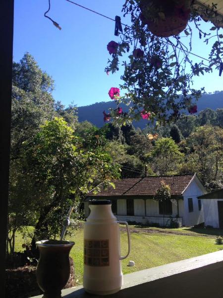 Sitio Pangaré - Sítio, Zona Rural, Gramado (103596) - Foto 8