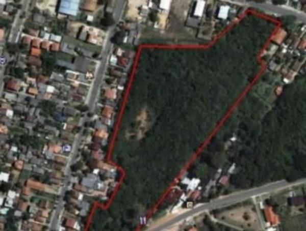 Terreno - Terreno, Vila Nova, Porto Alegre (103684)