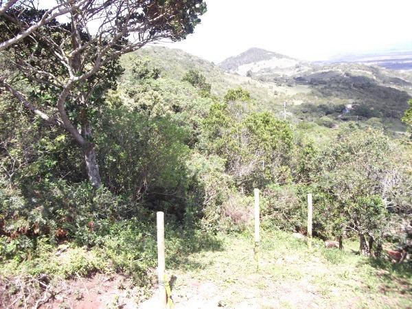 Condominio Horizontal Caminho do Meio - Terreno, Palhocinha, Garopaba - Foto 5