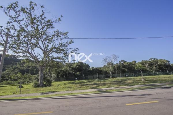 Ducati Imóveis - Terreno, Vila Nova, Porto Alegre - Foto 4