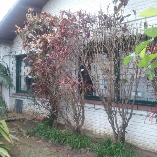 Casa - Casa 3 Dorm, Guarujá, Porto Alegre (106704)