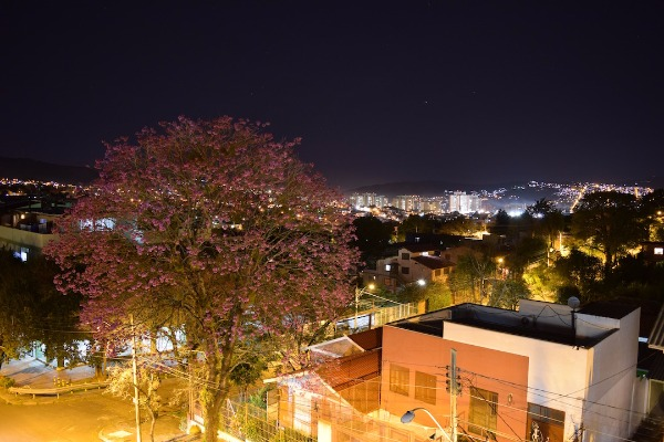 Cobertura 4 Dorm, Jardim Botânico, Porto Alegre (106866) - Foto 24