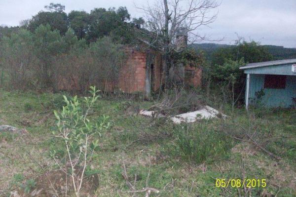 Chácara 1 Dorm, Pedras Brancas, Guaiba (107000) - Foto 4