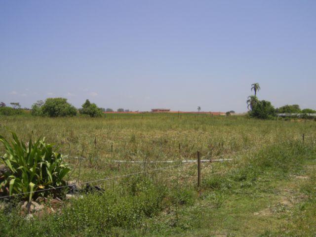 Terreno, Mato Grande, Canoas (43585) - Foto 3