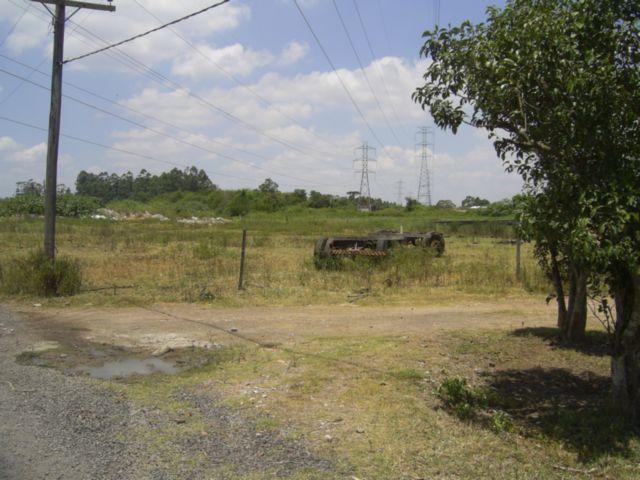 Terreno, Mato Grande, Canoas (43585) - Foto 7