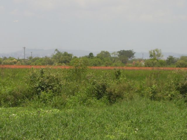 Terreno, Mato Grande, Canoas (43585) - Foto 8