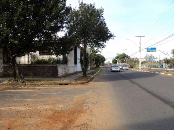 Igara - Casa 3 Dorm, Igara, Canoas (52948) - Foto 14