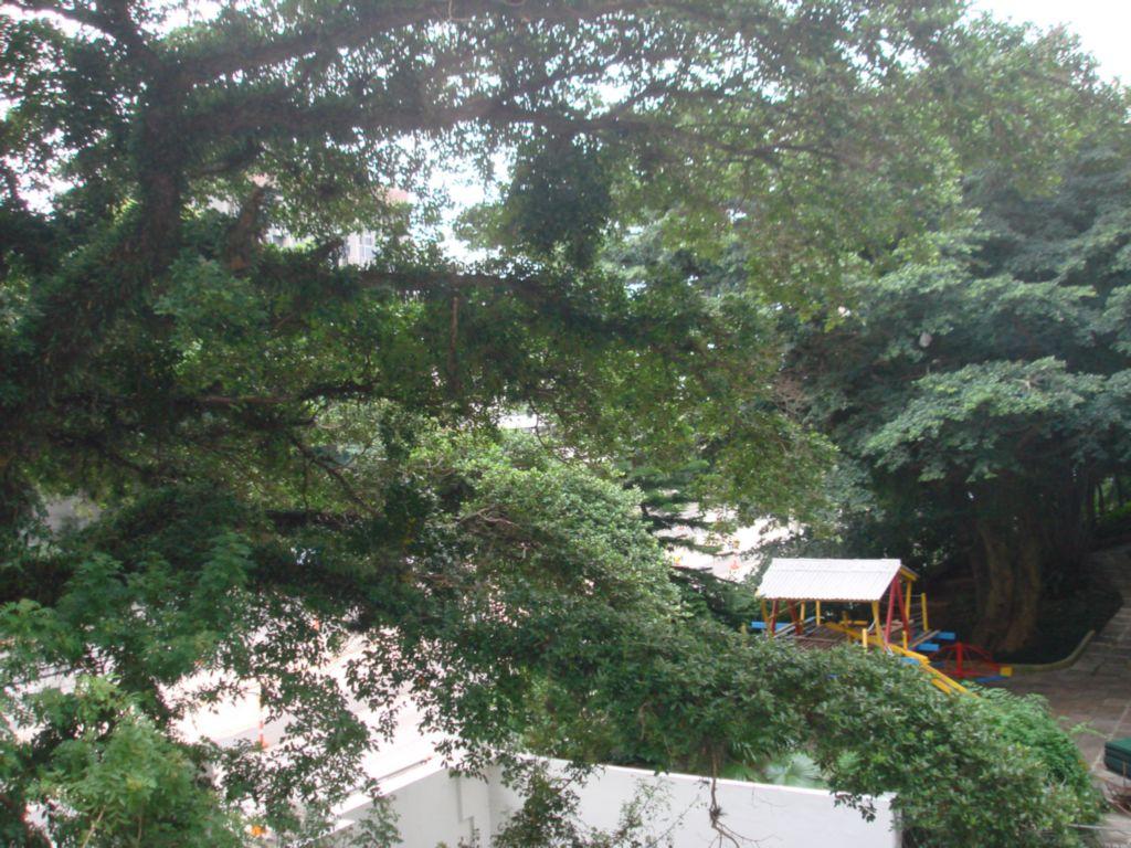 Comune Di Medole - Sala, Auxiliadora, Porto Alegre (59937) - Foto 5