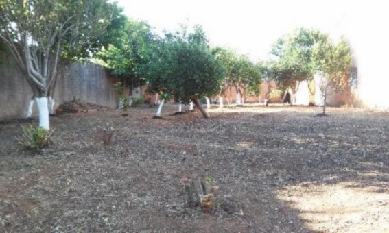 Terreno, Harmonia, Canoas (61558) - Foto 3