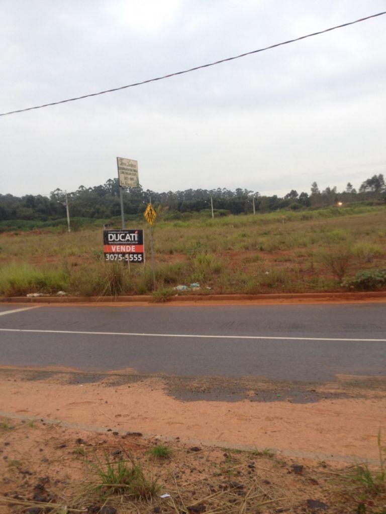 Industrial - Terreno, São Luiz, Canoas (61796)