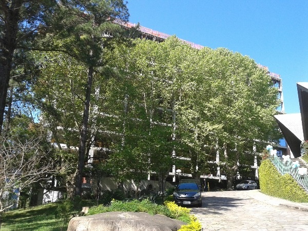 Ag Anita Garibaldi Corporate&offices - Sala, Bela Vista, Porto Alegre - Foto 5