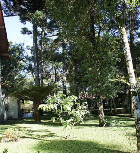 Casa 5 Dorm, Sinosserra, Canela (64555) - Foto 21