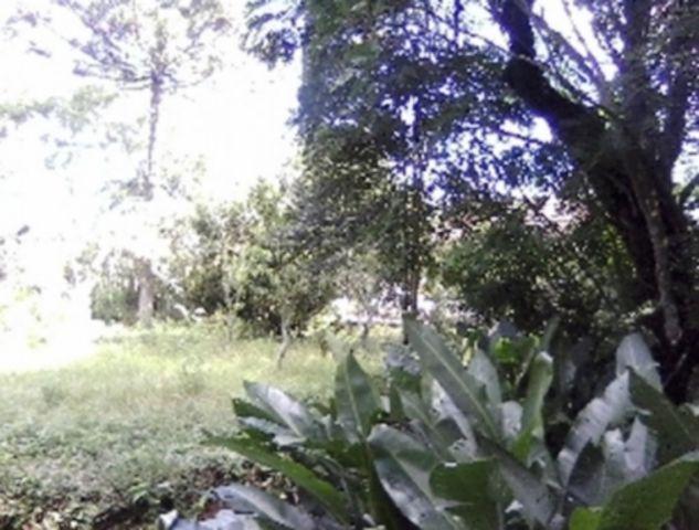 Terreno, Ipanema, Porto Alegre (74372) - Foto 6