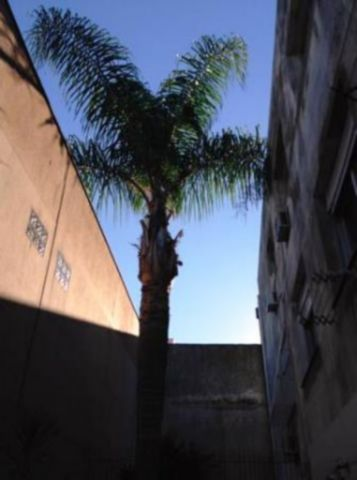Montese - Apto 2 Dorm, Jardim Botânico, Porto Alegre (74903) - Foto 5