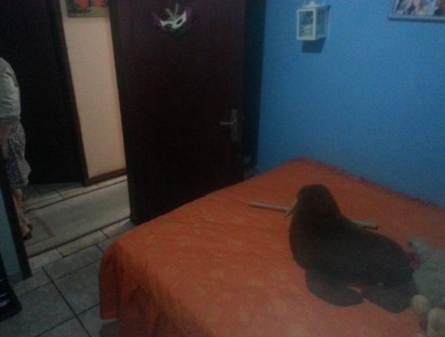 Casa 3 Dorm, Marechal Rondon, Canoas (77582) - Foto 12