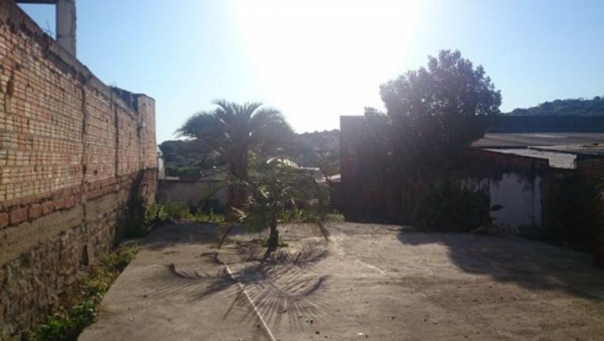 Ducati Imóveis - Terreno, Cristal, Porto Alegre - Foto 4