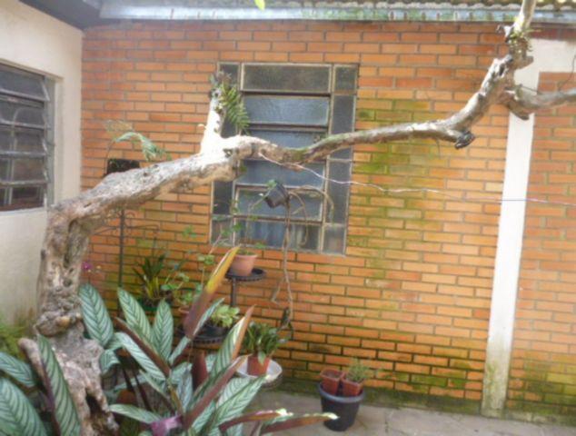 Casa 3 Dorm, Santo Antônio, Porto Alegre (81435) - Foto 4