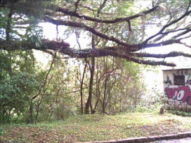 Terreno, Teresópolis, Porto Alegre (82496)