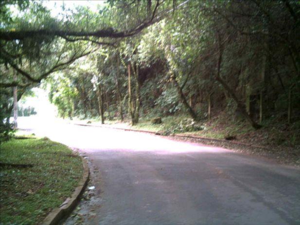 Terreno, Teresópolis, Porto Alegre (82496) - Foto 2
