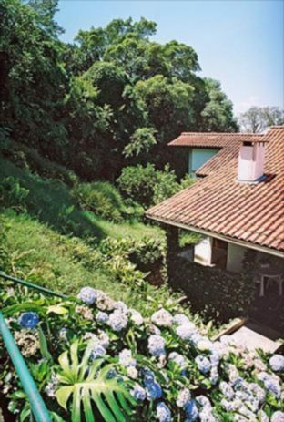 Ducati Imóveis - Terreno 3 Dorm, Tristeza (84890)