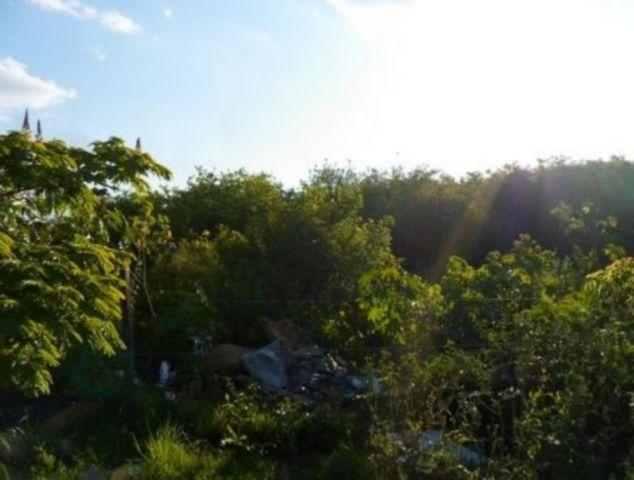 Terreno, Rio Branco, Canoas (89969)