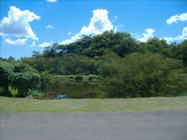 Terra Ville - Terreno, Cavalhada, Porto Alegre (91543) - Foto 5