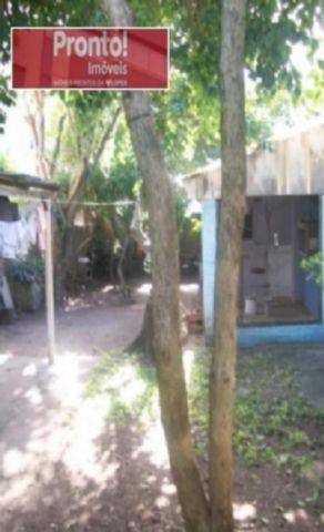 Ducati Imóveis - Casa 3 Dorm, Azenha, Porto Alegre - Foto 5