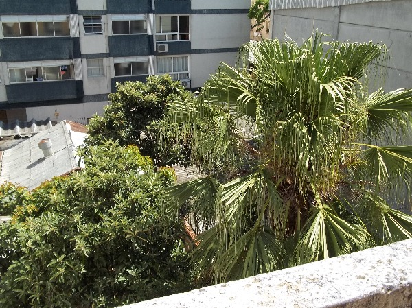 Wulff - Apto 3 Dorm, Bom Fim, Porto Alegre (98647)