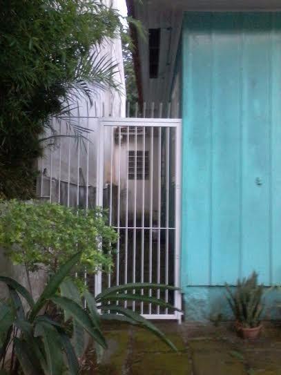 Terreno com Casa - Casa 3 Dorm, Chácara das Pedras, Porto Alegre - Foto 6