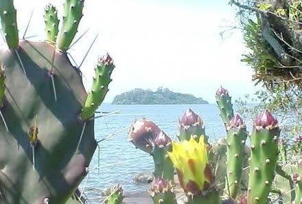Ilha de Imaruí - Terreno, Lagoa da Conceição, Florianópolis (98970) - Foto 2