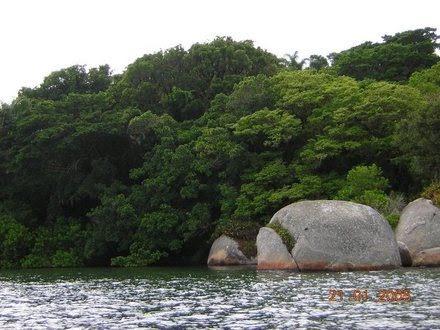 Ilha de Imaruí - Terreno, Lagoa da Conceição, Florianópolis (98970) - Foto 5