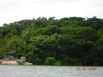 Ilha de Imaruí - Terreno, Lagoa da Conceição, Florianópolis (98970) - Foto 4