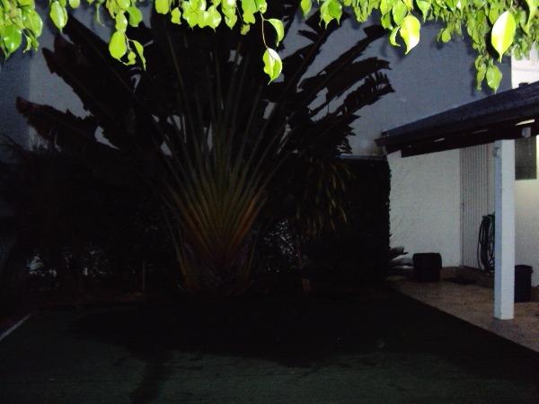 Ducati Imóveis - Casa 3 Dorm, Protásio Alves - Foto 3